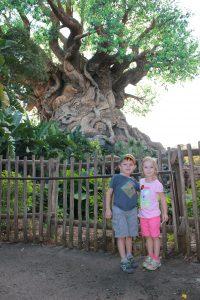 Cernys' Journeys Disney Animal Kingdom