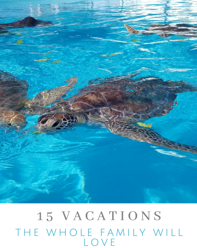 Vacations the Whole Family Will Love