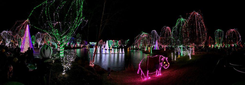 Wildlights, Columbus Zoo - Zen Life and Travel