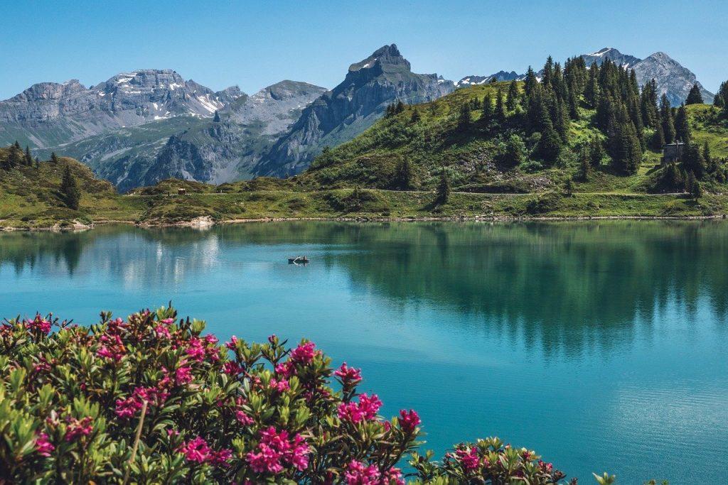 Cernys' Journey Switzerland